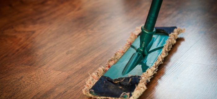 Expert Cleaning Tips for Homes with Kids and Pets